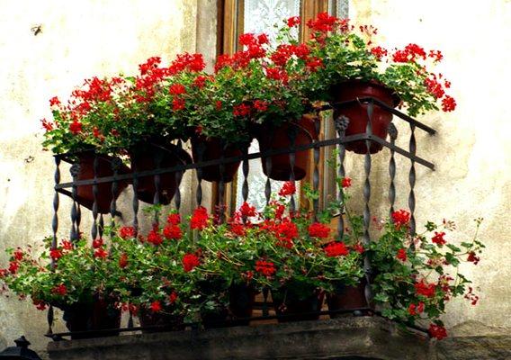 Даже маленький балкон может принести пользу
