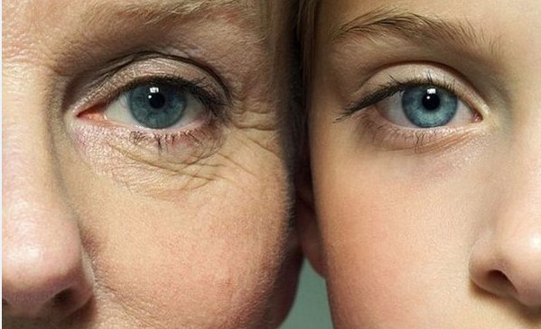 5 добавок против старения