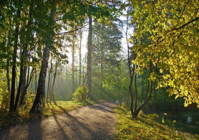 Прогулки по Петербургу - Шуваловский парк