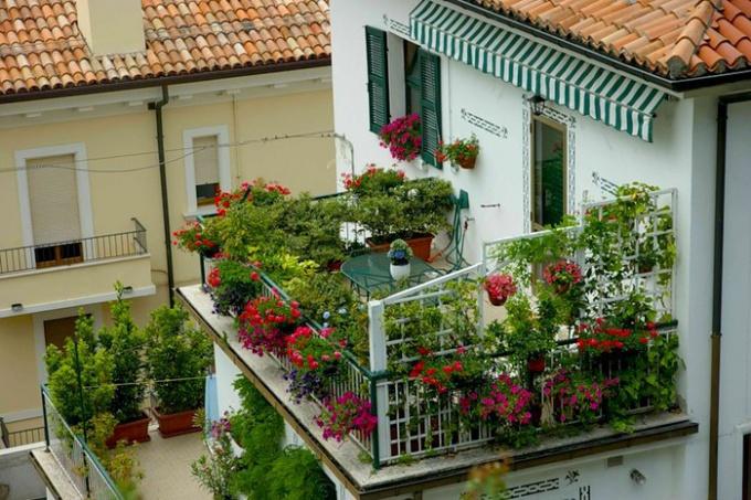 Балкон по сторонам света: идеи и руководства