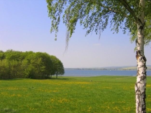 Весенний отдых на природе