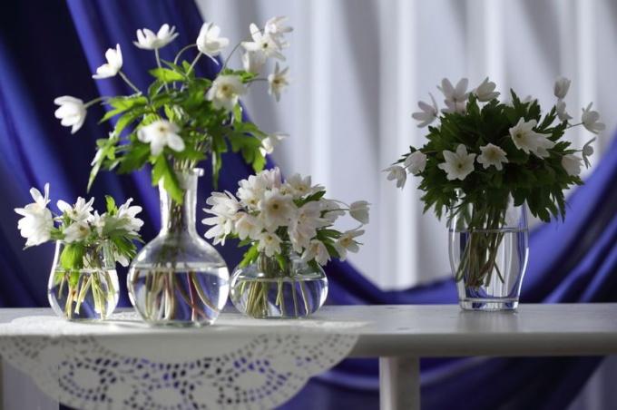 Источник: http://www.photl.com/