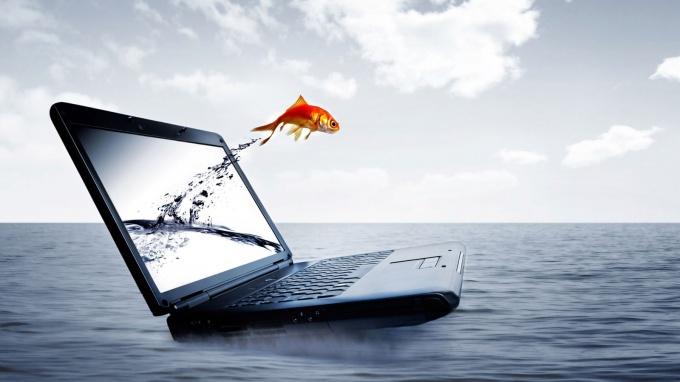 Как сделать скрин на ноутбуке или компьюетере