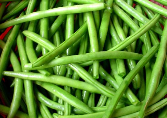 Спаржевая фасоль: выращивание и уход