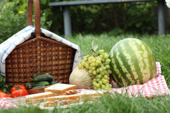 Секреты удачного пикника