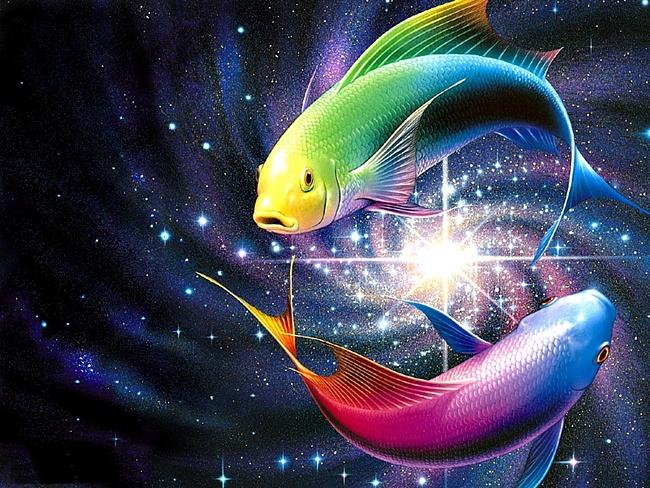 Рыбы по знаку зодиака