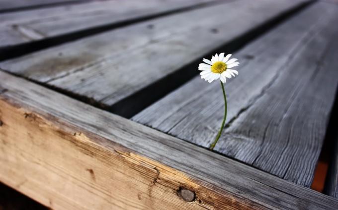 Психологические факторы одиночества