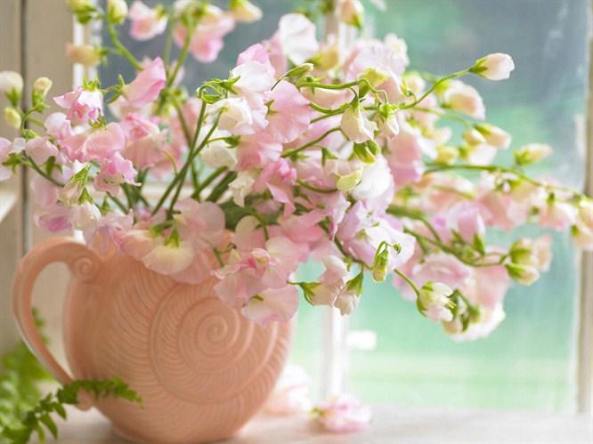 Как сохранить дольше срезанные цветы