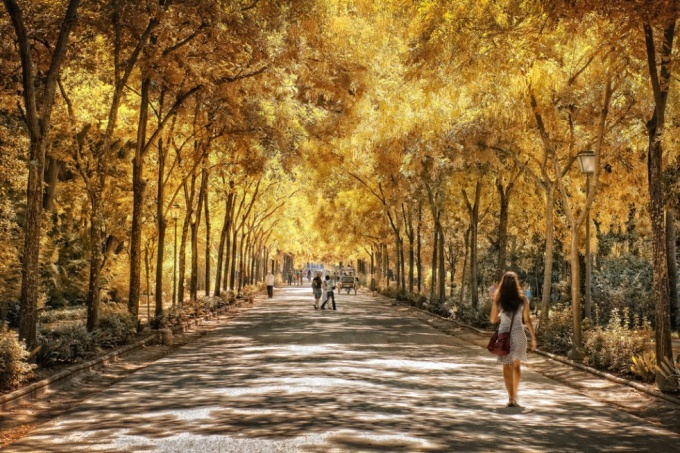 Отдых в Испании: Севилья - парк Марии Луизы