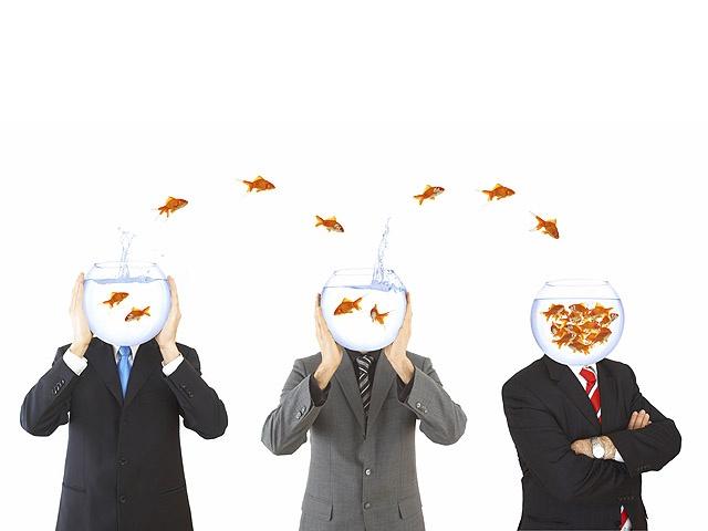 Идеи и наработки бизнес -экспертов помогут руководителю повысить свою осознанность.