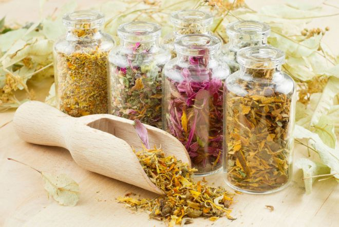 Как положительно собирать, сушить и беречь целебные травы