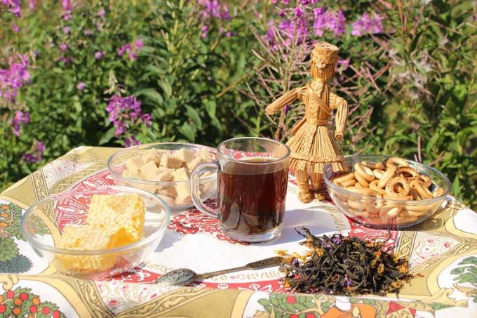 Как правильно собирать и заготавливать иван-чай