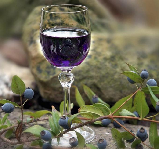 How to make blueberry liqueur