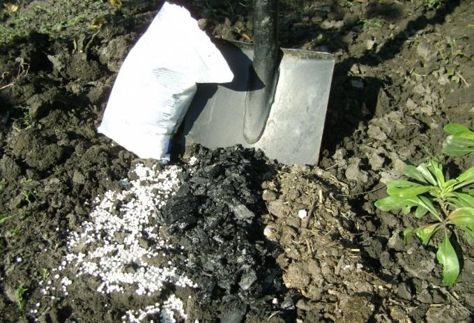 почва удобрения для цветов