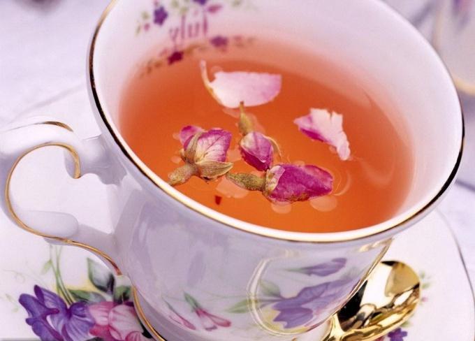 Научитесь ферментировать иван-чай в домашних условиях