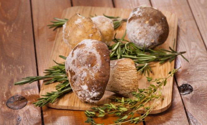 Зачем варить грибы перед заморозкой