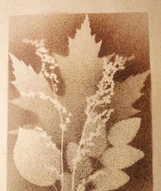 Осенний букет на листе