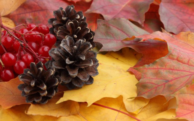 Какие поделки можно сделать из природного материала на тему осень