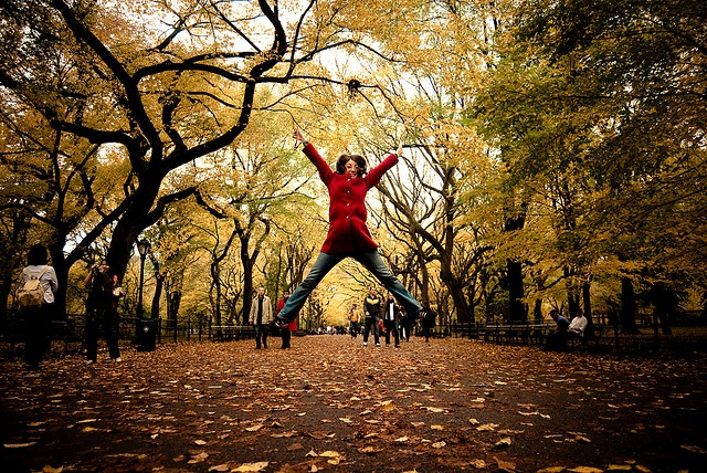 Осень - не повод скучать