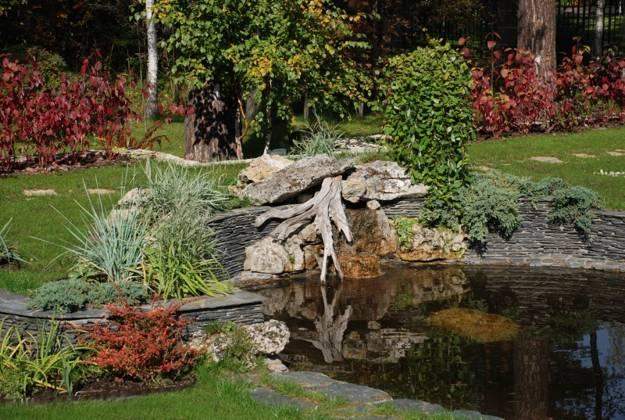 stumps in garden design photos
