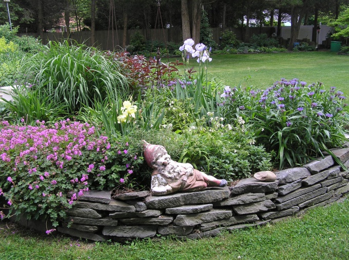 flowerbeds in the garden with his hands photo