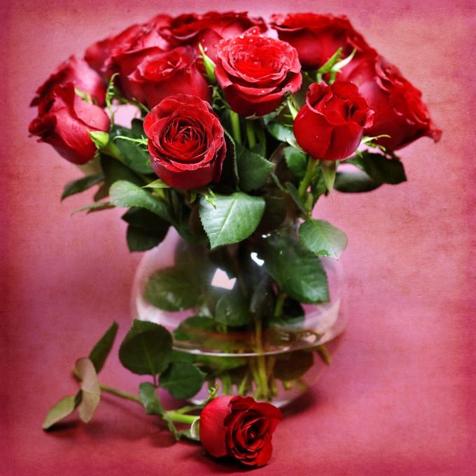 Два простых способа вырастить розу из букета