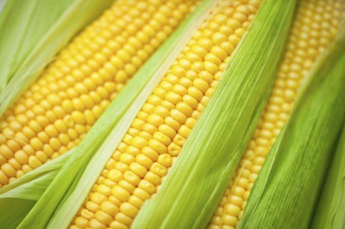 Как сварить кукурузу за 5 минут без воды