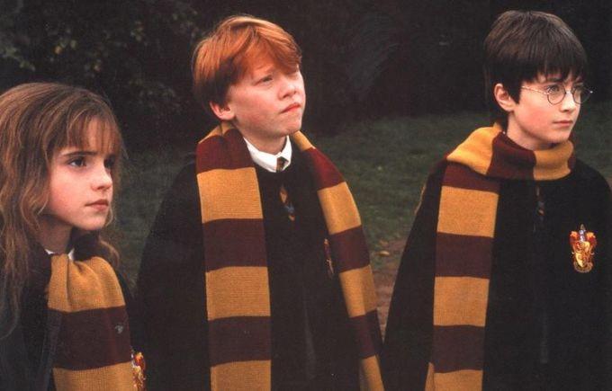 Как просто связать шарф как у Гарри Поттера