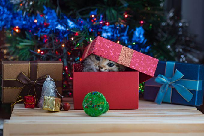 Что не стоит дарить на Новый год