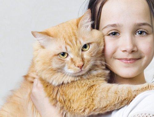 Как домашние животные влияют на здоровье