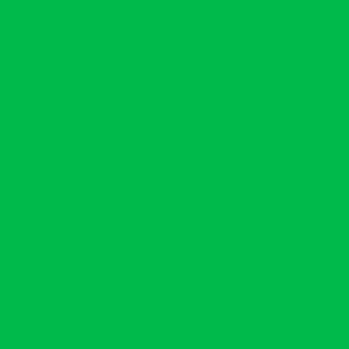 Какой оттенок зеленого будет модным в 2017 году и с чем его носить