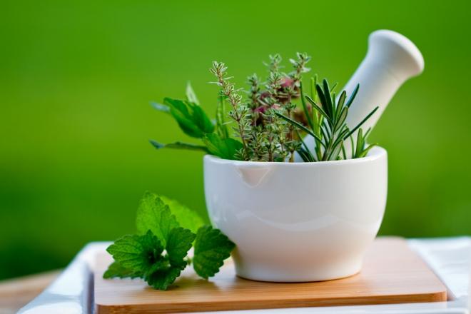 Лечение травами, что нужно знать
