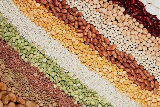 Как выбрать хорошие семена