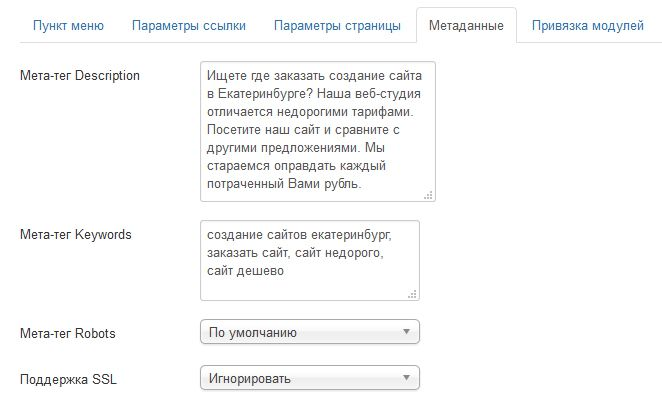 Write meta tags keywords and description