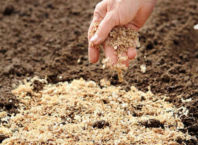 How to make compost with sawdust