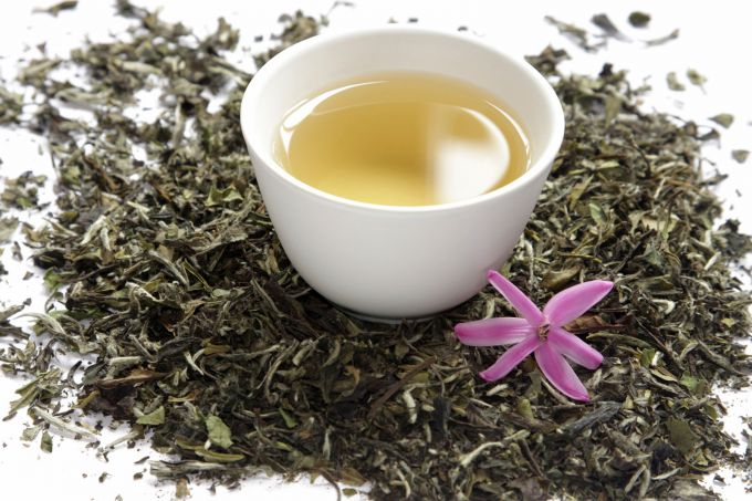 Everything you need to know about white tea