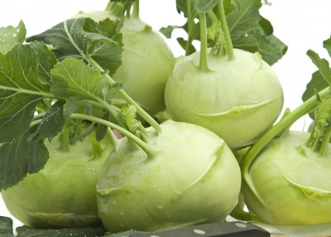 Kohlrabi. What is useful and how to cook