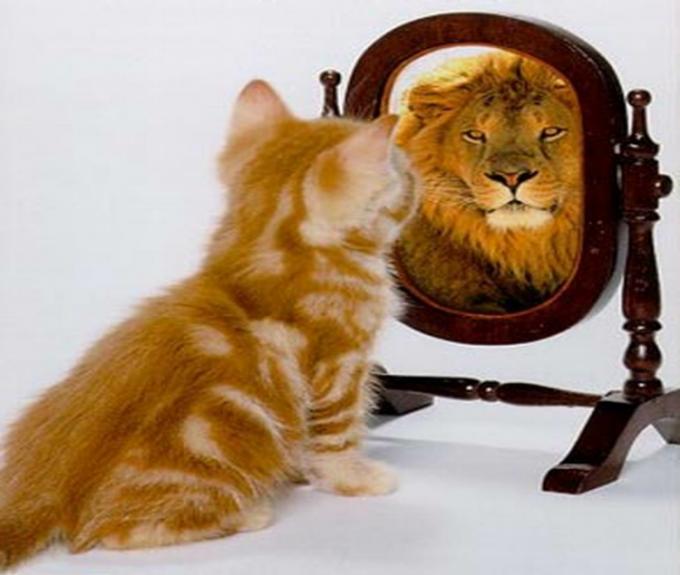 Techniques of self-esteem