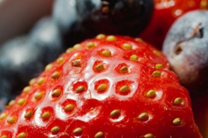 """Клубника """"Зефир"""": сорт ягод для души и бизнеса"""