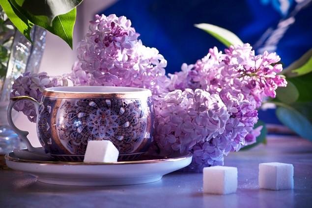 Healing jam lilac