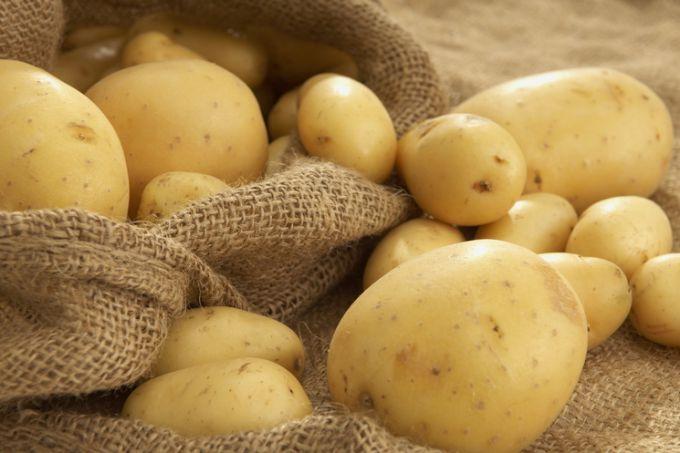 Картофель – любимый овощ