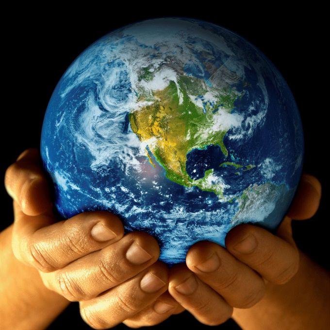 Как внести свою лепту в защиту окружающей среды