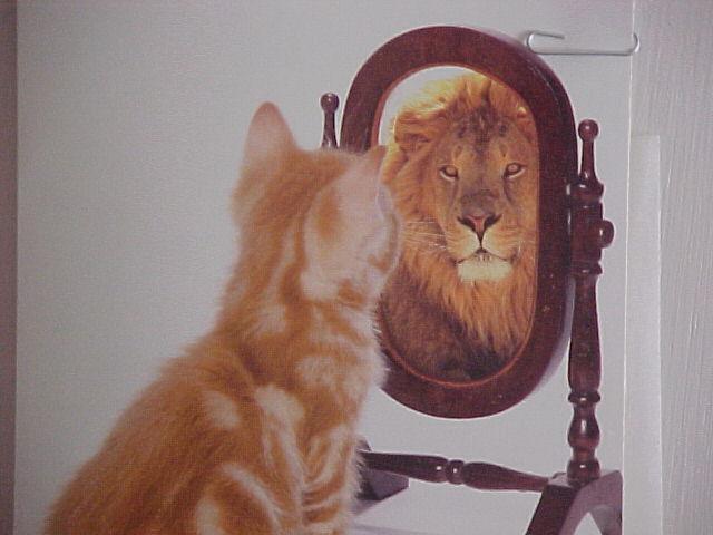 Особенности развития в себе уверенности