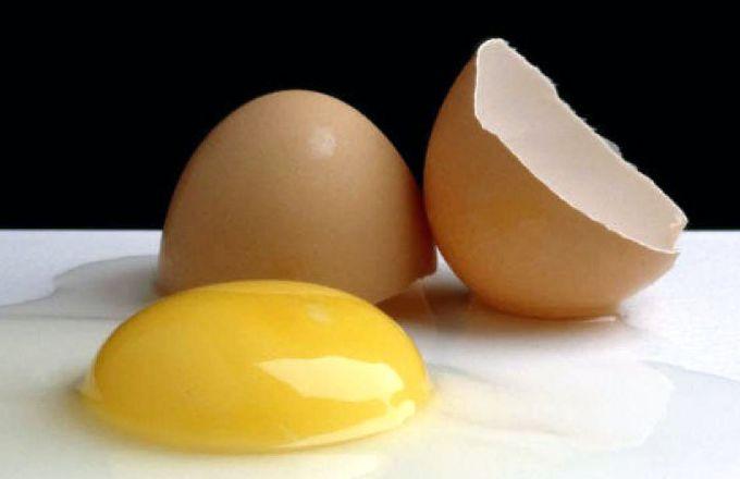 Как рассчитать вес яйца без скорлупы, белка и желтка