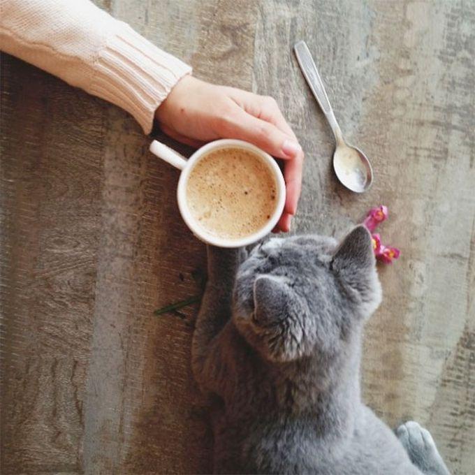 Как сделать каждое утро бодрым