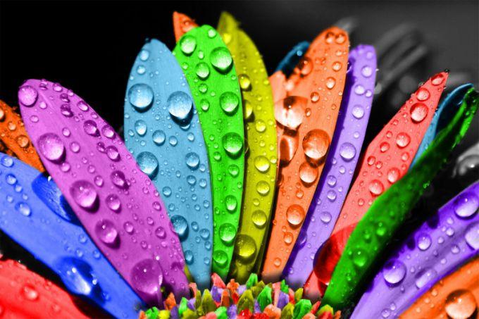 Психология некоторых оттенков цветов