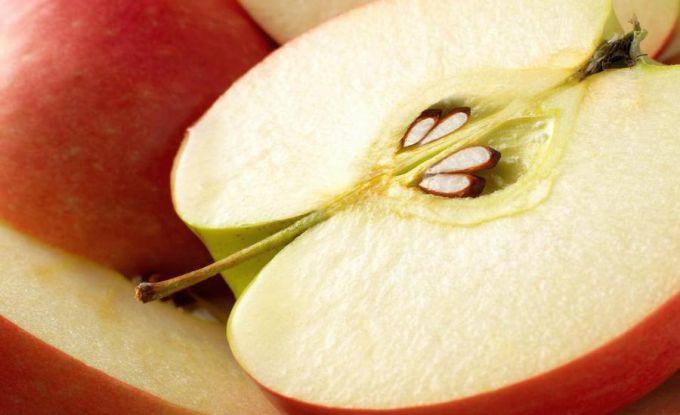 Можно ли вырастить яблоню из косточки в домашних условиях?