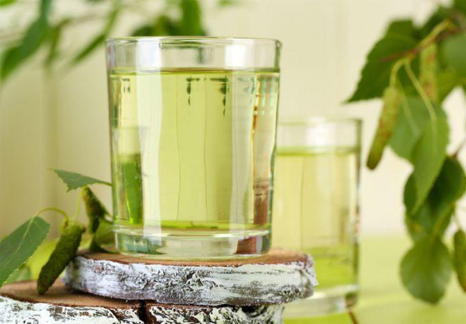 Чем полезен березовый сок для организма, как его собирать и хранить