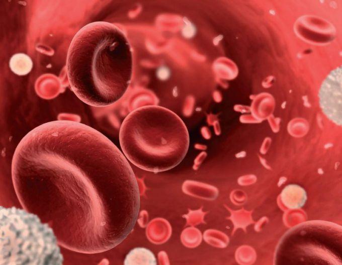 Талассемия: что это, причины, симптомы, диагностика и лечение