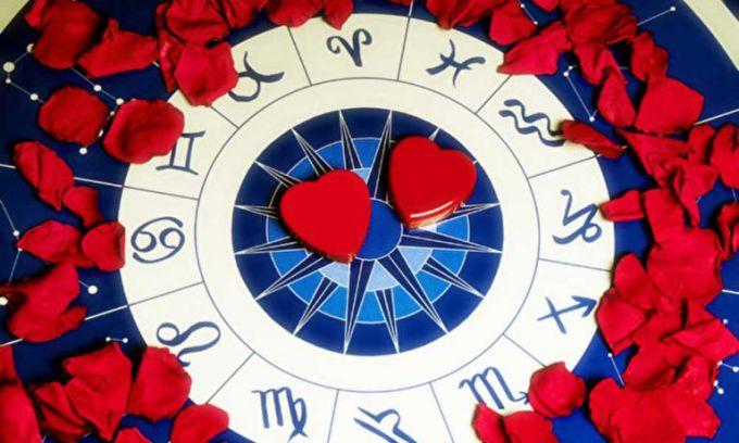 Любовный гороскоп на 2018 год Желтой Собаки для всех знаков Зодиака